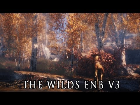 Skyrim ENB Presets - The Wilds ENB 3.0