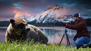 Landscape Photography with BEARS Around