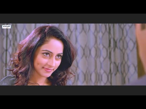 CONTROL BHAJI CONTROL | NEW FULL PUNJABI MOVIE | LATEST PUNJABI MOVIES 2014 | KARAN KUNDRA