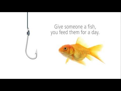 A MEDA Fish Tale