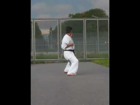 Bassai Dai kyokushin kata  Image 1