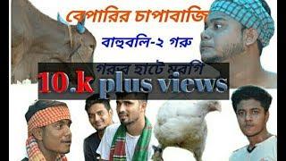 ভয়ানক কুরবানির হাট || kurbani-eid special bangla funny video || Dhoka bazz