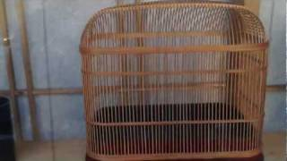 Traditional Japanese Bamboo Insect Cages