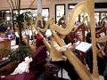 AHS 11th Annual Christmas Harp Extravaganza #9