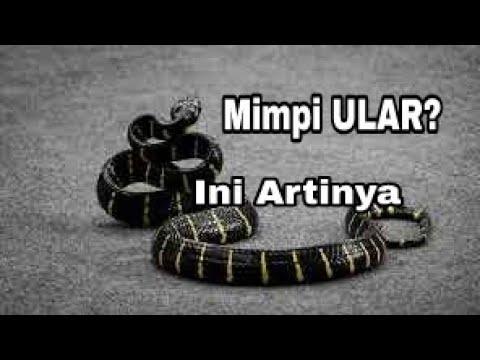 TAFSIR MIMPI ULAR    Ta'bir Ar-Rukya