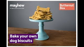 How To Make Your Own Dog Biscuits | Mayhew