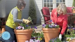 ASK MARTHA Container Gardening - Home How-To Series - Martha Stewart