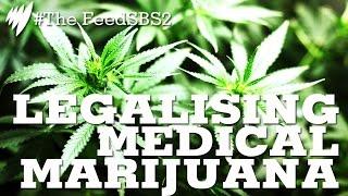 Medical Marijuana Legalisation I The Feed