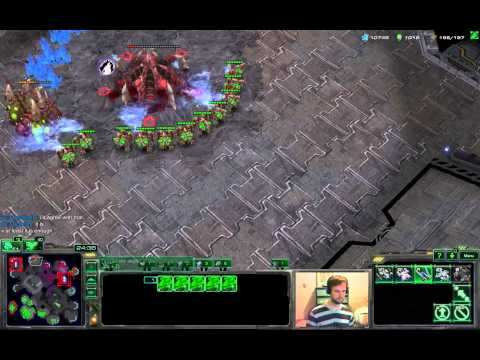Reported! - Masters TvZ - Starcraft 2 HotS