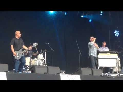 Inspiral Carpets - Spitfire video