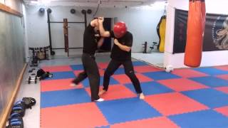 Wing Chun- How to block and punch in a street fight