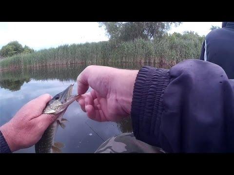 3 карьер барнаул рыбалка