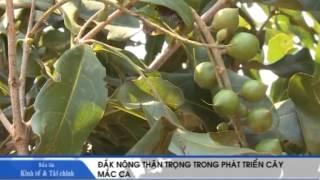 BAN TIN TAI CHINH INFOTV