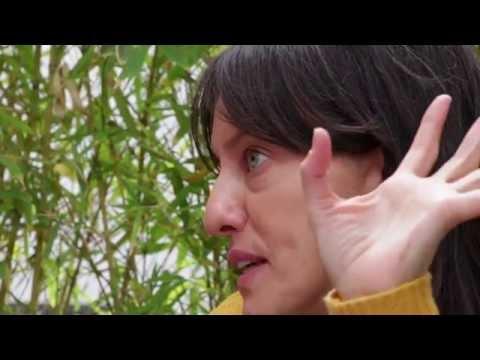 Cine Ecuatoriano: Pasado, Presente y Futuro