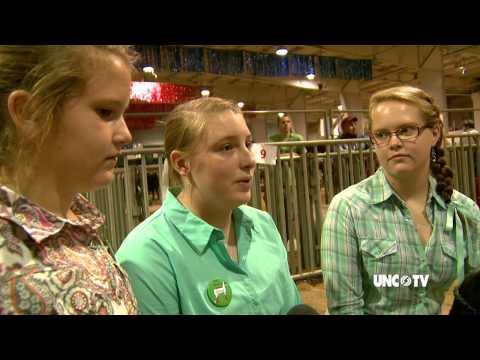NC State Fair:  Livestock Auction for Kids | UNC-TV