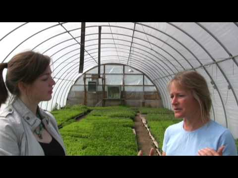 What is Community Supported Agriculture (CSA)?