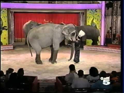 Moira degli Elefanti - Moira Orfei - 1991 - Sabato al Circo