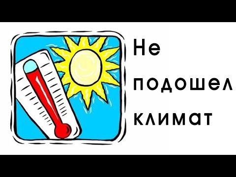 Краснодар/Не подошел климат?