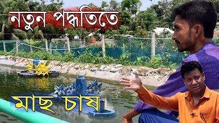১ বিঘা পুকুরে পাবদা মাছ ৫ মাসে ৭ লক্ষ টাকা লাভ। নতুন পদ্ধতিতে চাষ করছেন,নাঙলকোটের ইমান |Episode-365