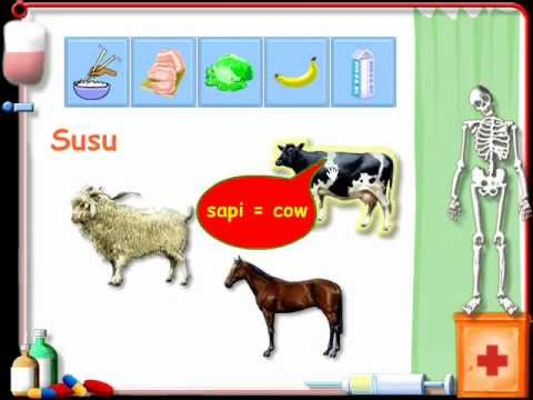 percakapan bahasa inggris kelas 6
