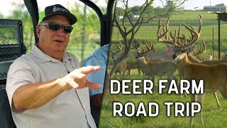 Deer Farm Road Trip | Deer and Wildlife Stories
