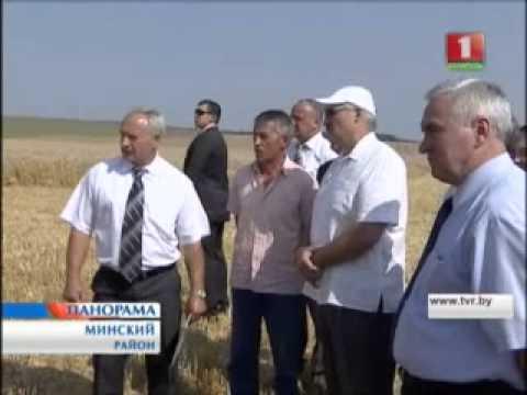А.Лукашенко посетил агрохозяйства  1-ой Минской птицефабрики