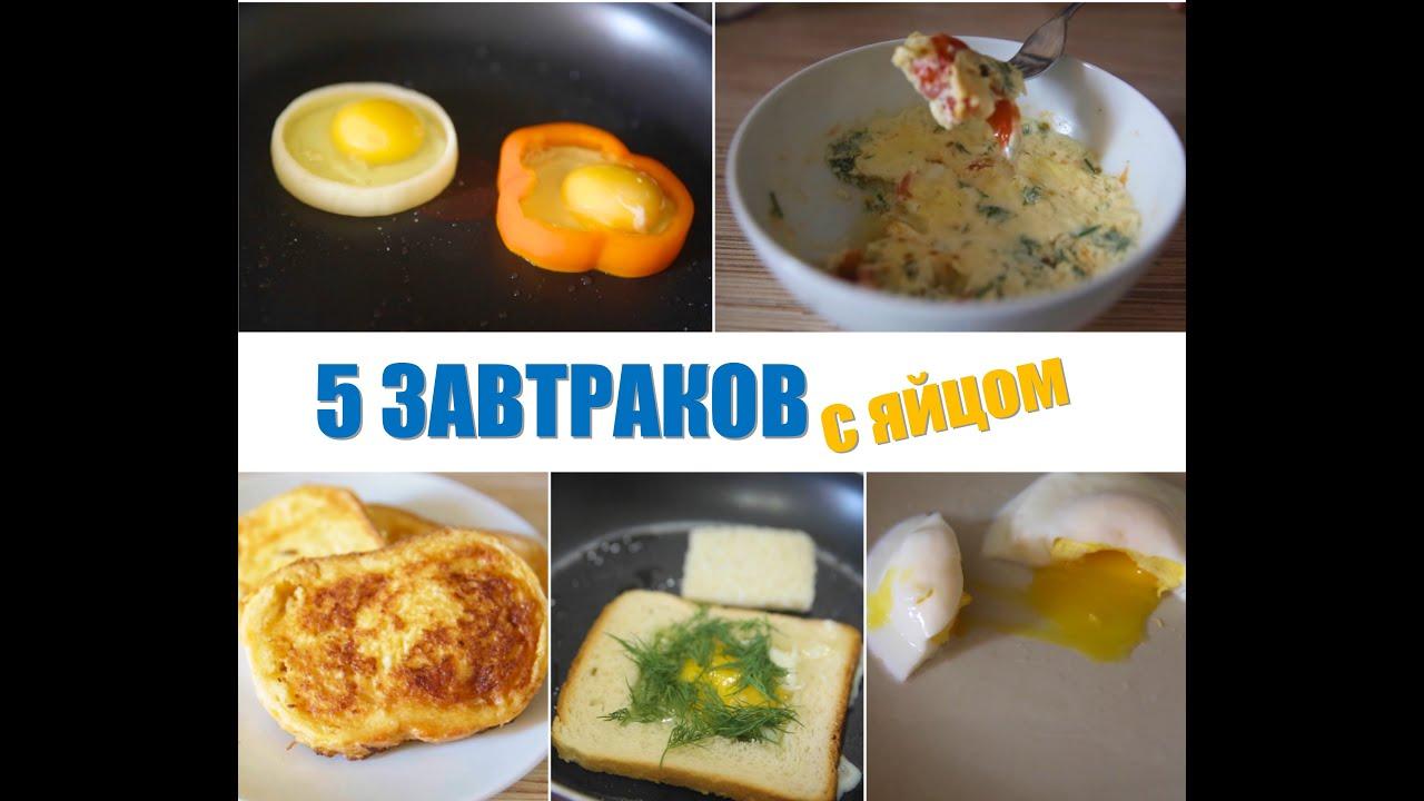 что приготовить на завтрак из яиц быстро и вкусно рецепты