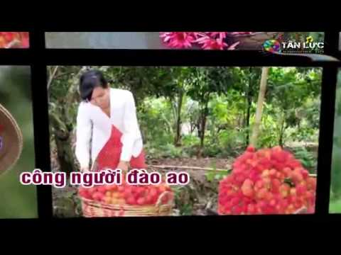 Ao Ca Doi Cho video
