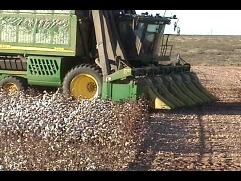 Cotton harvest 2008-1 Video
