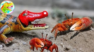 🐉 Dinosaurs protect the herd of DRAGON - A559A toy toy 🐉