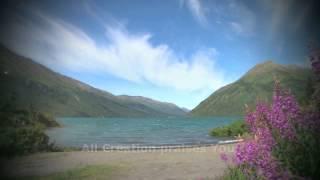 Watch Angelo Branduardi Il Cantico Delle Creature video