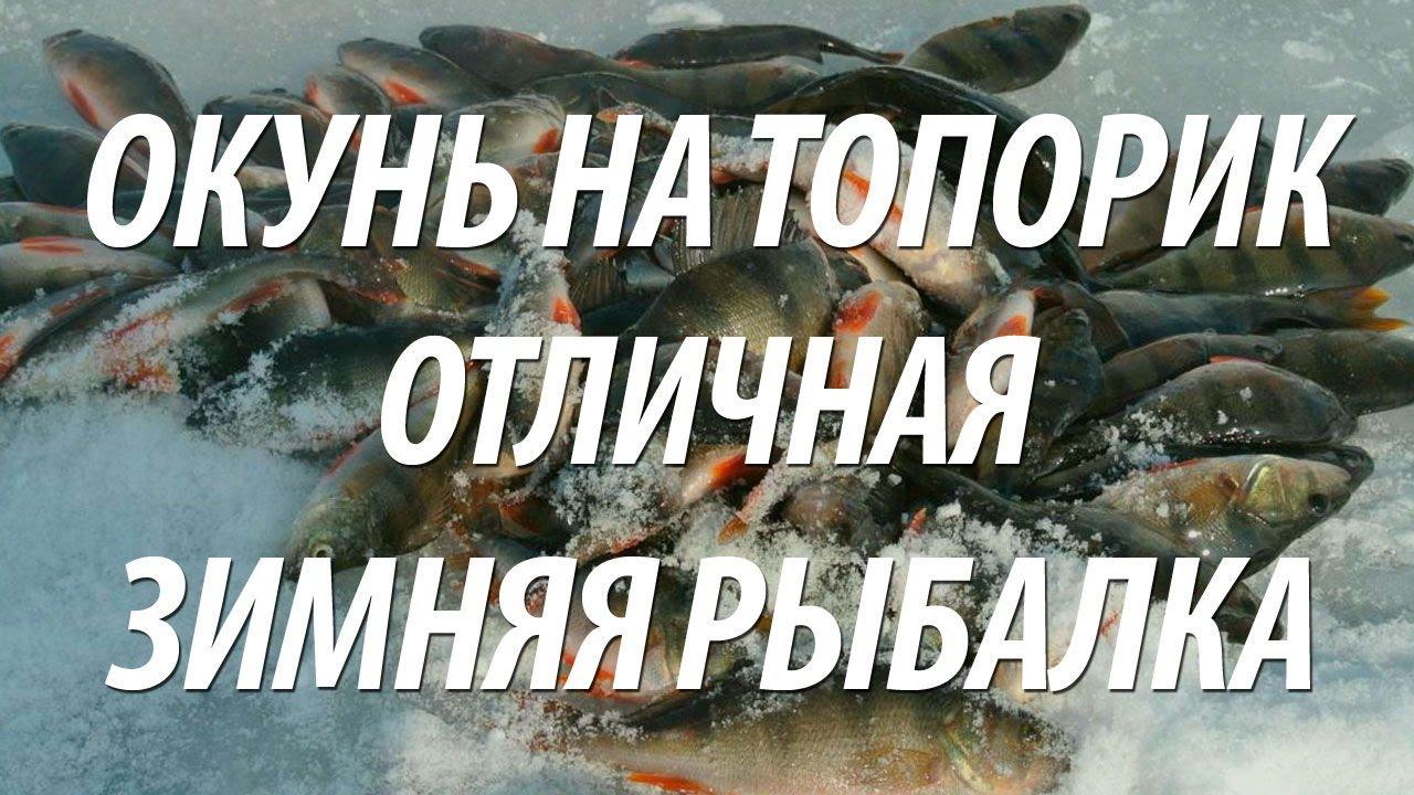 рыбалка на окуня в снасть с топориком