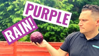 PURPLE RAIN - How to make Red Cabbage Juice for Stomach Ulcers/Gut Health   Benefits of Red Cabbage!