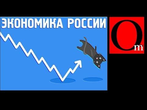 Экономический отскок дохлой кошки