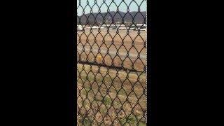 The University of Alabama football team landing at KBHM 1/12/16