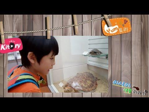 얌얌얌~ 얌토리! [이삭이의 생물 이야기] 생물계의 뇌섹남 이삭이와 함께하는 파충류 이야기