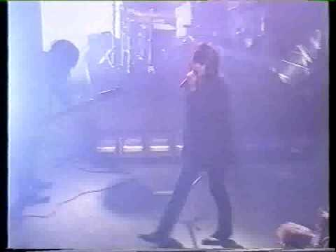 Quireboys - Sex Party video