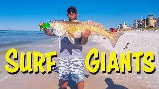 Destin Surf Fishing - Giant Fish on Light Tackle