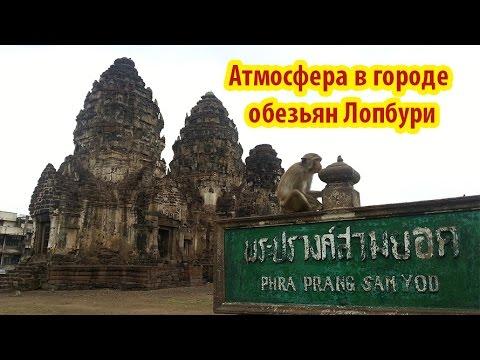 Атмосфера в Храме с обезьянами (Тайланд)