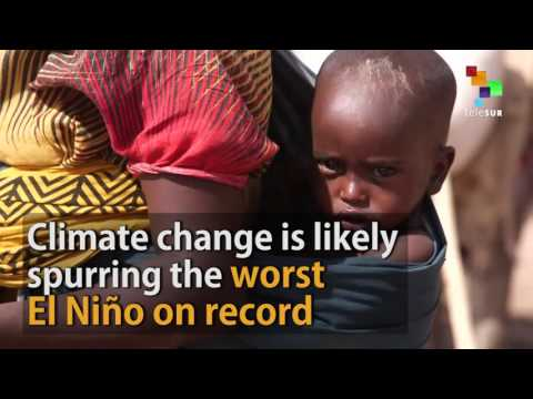 60 Million People Affected by Climate Change Across the World