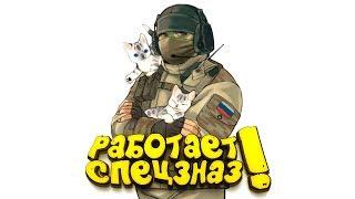 РАБОТАЕТ СПЕЦНАЗ! - ШИМОРО В Rainbow Six: Siege