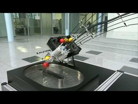 Festo - Bionic Learning Network 2010 (version en)