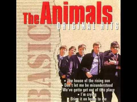 Animals - Im Mad Again