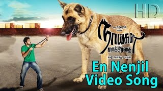 Naaigal Jaakirathai Movie En Nenjil Video song