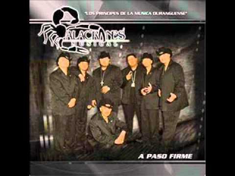 Alacranes Musical Zapateado Encabronao