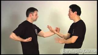 Preview - Samuel Kwok - Wing Chun Vol 4 - CHI SAO