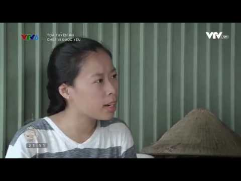 Tòa xử án - Chết vì được yêu - Luật sư giỏi tại Hà Nội