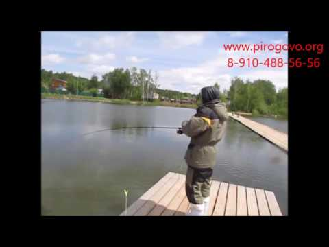 рыбалка на платнике в лобне