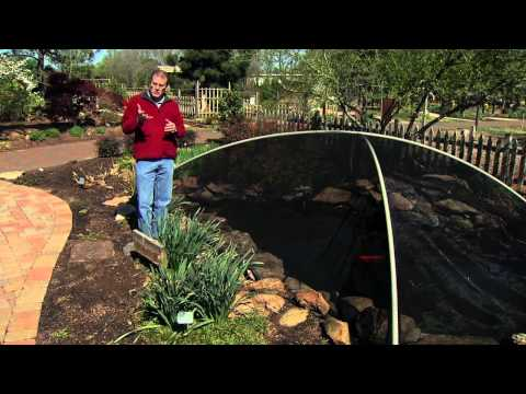 Gardening Tips for May (5/4/13)