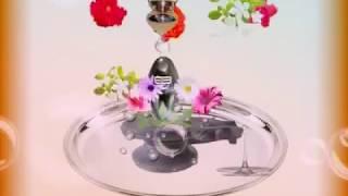 download lagu Ringtone Om Namah Sivay Gif gratis